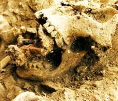 25-resti-di-anni-orsono-della-cosiddetta-strega-baratti