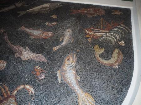13-il-mosaico-romano-con-i-pesci-e-la-scena-del-nauragio-al-museo-archeologico-di-piombino